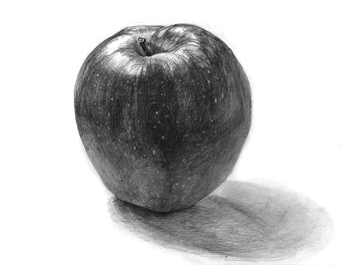 りんごの描き方:鉛筆デッサン